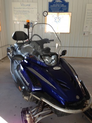Picture of 2006 Yamaha VK Pro 1000