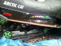 1999 Arctic Cat Thunder Cat 1000