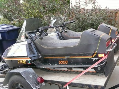 Picture of 1979 Arctic Cat Pantera 500