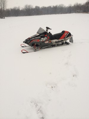 Picture of 2004 Polaris Pro X 600